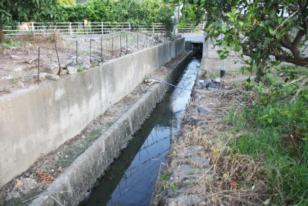 初夏になると用水路に水が流れる