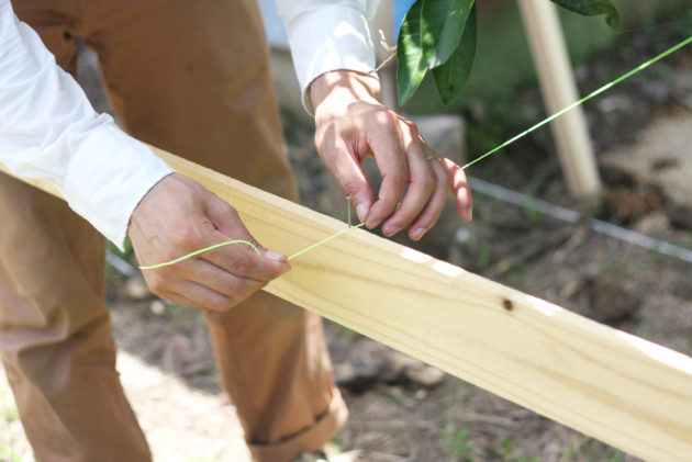 貫板の上に釘をうち、水糸を取り付ける